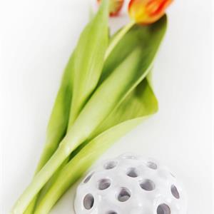 Blomsteroasis i keramik grön