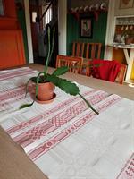 Sundbornsduk Röd 60 x 165 cm