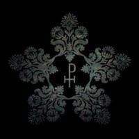 MR. PETER HAYDEN: FASTER THAN SPEED LP
