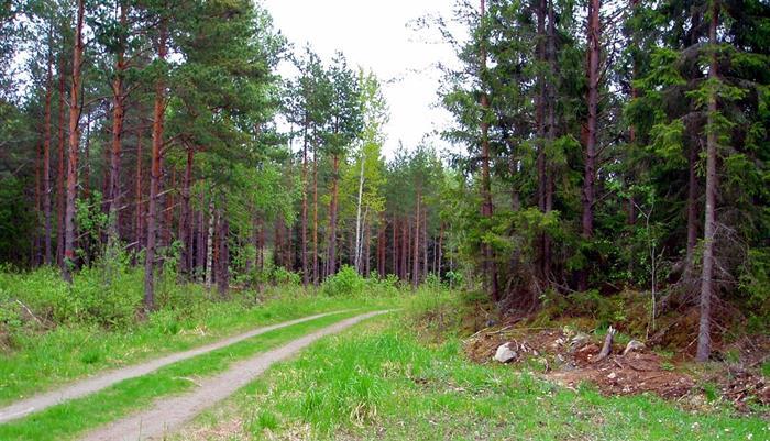 Roslagsleden etapp 2 Karby gård – Örsta 13 km