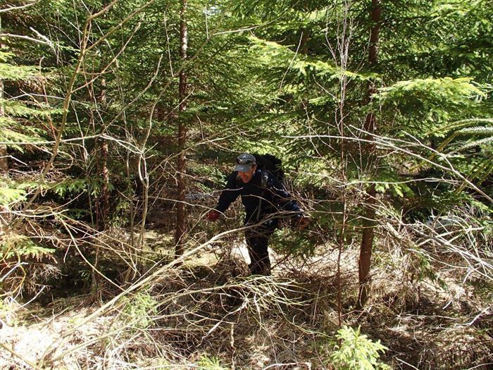 Upplandsleden Etapp 10 Gisslarändan – Vindskyddet norr om Gimo damm 17 km