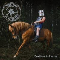STEVE 'N' SEAGULLS: BROTHERS IN FARMS 2LP
