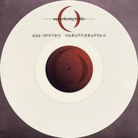 PERFECT CIRCLE: THE DOOMED/DISILLUSIONED 10