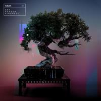 HAELOS: ANY RANDOM KINDNESS LP