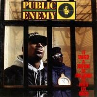 PUBLIC ENEMY: IT TAKES A NATION OF MILLIONS TO HOLD US BACK LP