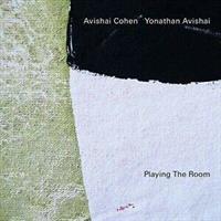 COHEN AVISHAI/AVISHAI YONAT: PLAYING THE ROOM LP (FG)