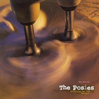 POSIES: FROSTING ON THE BEATER 2LP