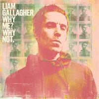 GALLAGHER LIAM: WHY ME? WHY NOT.-BLACK LP