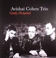 COHEN AVISHAI: GENTLY DISTURBED LP