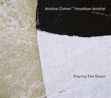 COHEN AVISHAI/YONATHAN AVISHAI: PLAYING THE ROOM (FG)