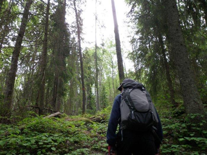 Upplandsleden Etapp 6 Kroken – Almunge 23,5 km