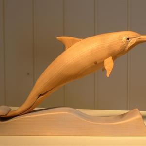 Nøtteknekkar, delfin