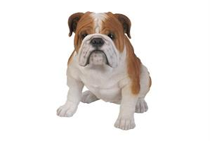Bulldog resin 46x29x36