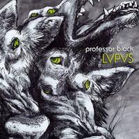PROFESSOR BLACK: LVPVS 12