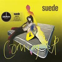 SUEDE: COMING UP LP