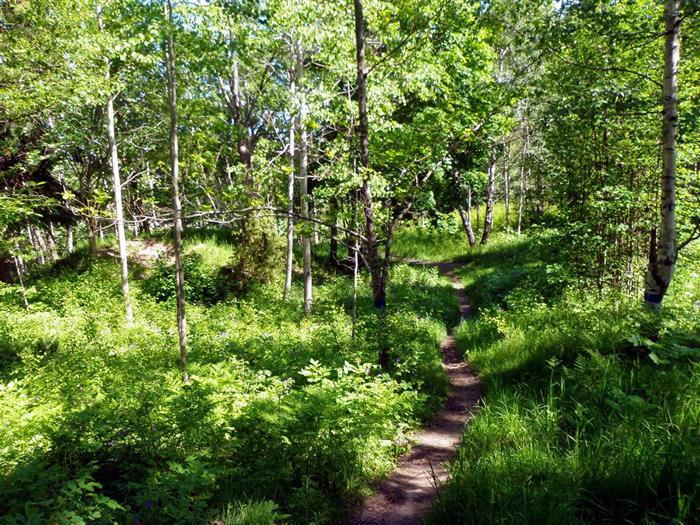 Roslagsleden etapp 3 Örsta – Lövhagen 16 km