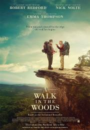 The walk in the woods (2015)