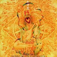 ACID MOTHER TEMPLE & THE MELTING PARAISO U.F.O.: LA NOVIA