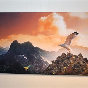Lerret Klassisk 70x140cm