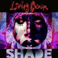 LIVING COLOUR: SHADE