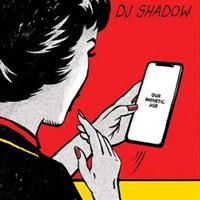DJ SHADOW: OUR PATHETIC AGE 2LP
