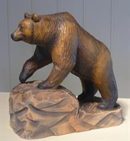 Brunbjørn, farga