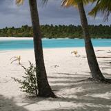 One Foot Island, Cook Islands
