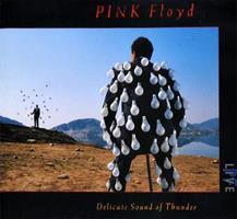 PINK FLOYD: DELICATE SOUND OF THUNDER-KÄYTETTY 2CD