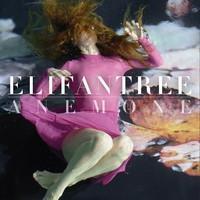 ELIFANTREE: ANEMONE LP