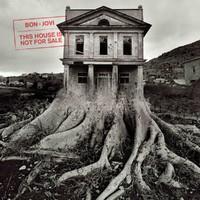 BON JOVI: THIS HOUSE IS NOT FOR SALE LP