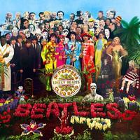 BEATLES: SGT. PEPPERS LONELY HEART CLUB BAND-50TH ANNIVERSARY LP