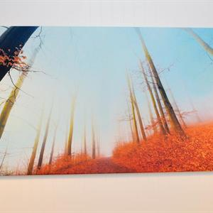 Lerret Klassisk 120x150cm