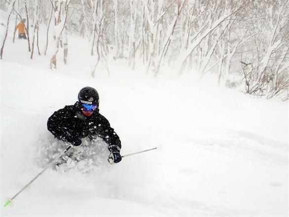 Läs mer om skidorter här