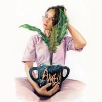IISA: AMELIA LP