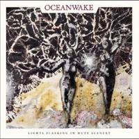 OCEANWAKE: LIGHTS FLASHING IN MUTE SCENERY