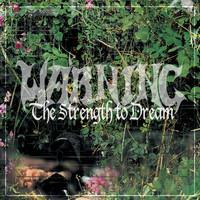 WARNING: THE STRENGTH TO DREAM-LIMITED GREY 2LP