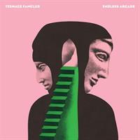 TEENAGE FANCLUB: ENDLESS ARCADE