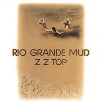 ZZ TOP: RIO GRANDE MUD-BROWN/BLACK SWIRL LP