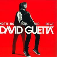 GUETTA DAVID: NOTHING BUT THE BEAT 2LP