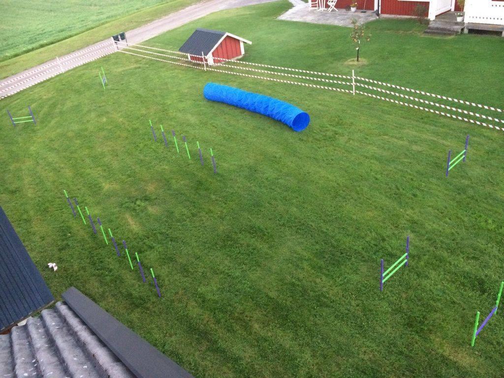 Agility-plan på gräsmattan