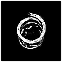 OKKULTOKRATI: SNAKEREIGNS LP