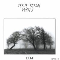 TERJE RYPDAL: WAVES (FG)