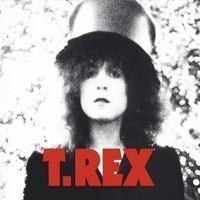T-REX: THE SLIDER