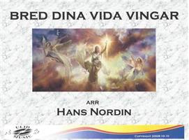 BRED DINA VIDA VINGAR