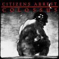 CITIZENS ARREST: COLOSSUS-THE DISCOGRAPHY 2LP