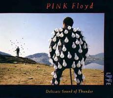 PINK FLOYD: DELICATE SOUND OF THUNDER 2CD
