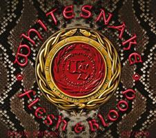 WHITESNAKE: FLESH & BLOOD CD+DVD