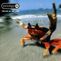 PRODIGY: THE FAT OF THE LAND 2LP