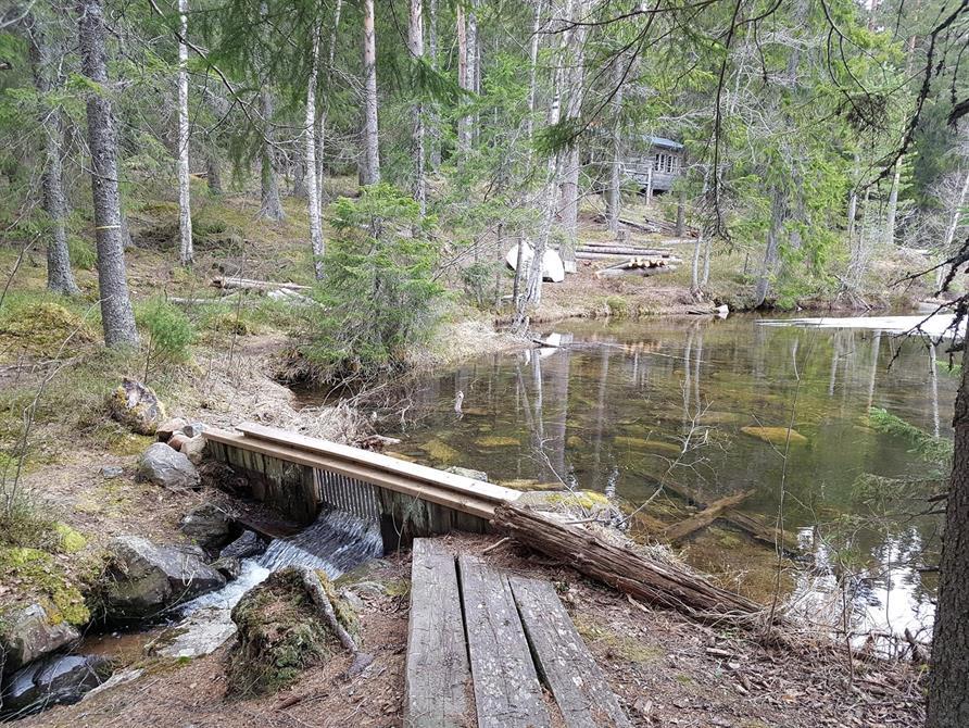 Dammen vid stora stugan
