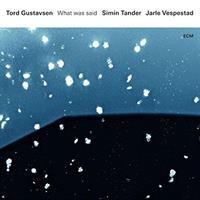 GUSTAVSEN TORD, SIMIN TANDER, JARLE VESPEST: WHAT WAS SAID (FG)